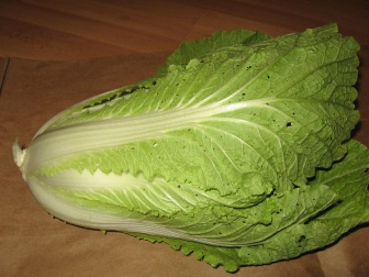 how to cut chinese cabbage